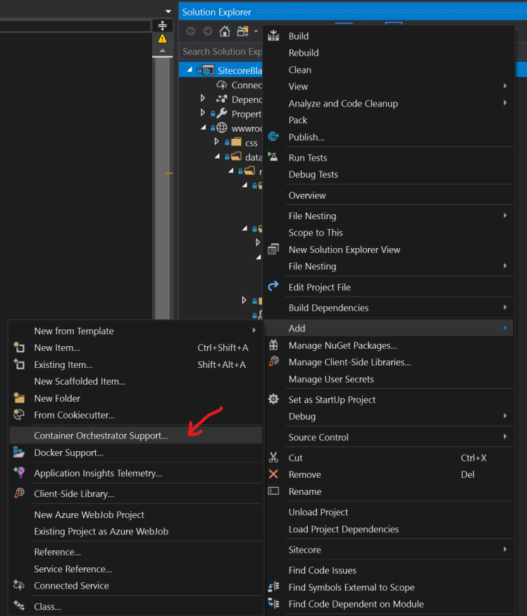 Run Sitecore Docker Containers In Your Helix Solution